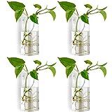 Nuptio 4 Pezzi Vaso di Fiori Vaso di Fiori Terrario Vaso Fioriera Appeso a Parete in Vetro Cristallo