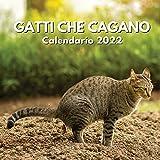 Gatti Che Cagano Calendario 2022: amanti dei gatti divertenti regali | regalo scherzoso donna uomo
