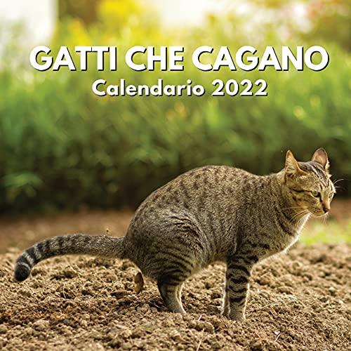 Gatti Che Cagano Calendario 2022: amanti dei gatti divertenti regali   regalo scherzoso...