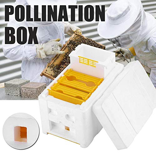 Bienenenstockkasten, Bienenenzucht, riesiges Bestäubungsmittel, automatischer Honig-Bienenstock- Rahmen, Rohernte