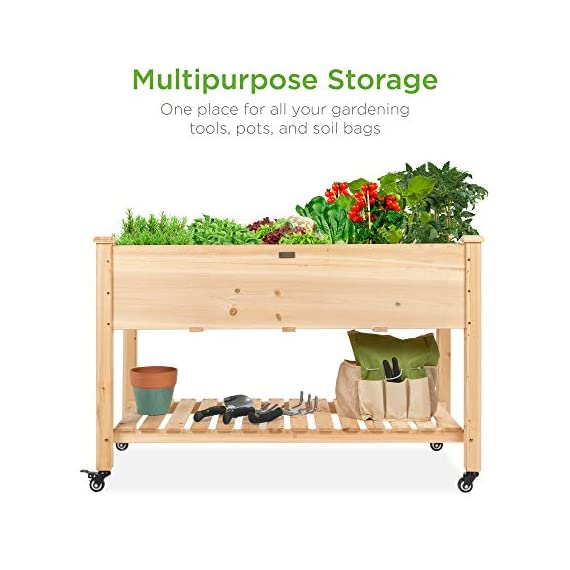 Best Choice Products Raised Garden Bed 48x24x32-inch Mobile Elevated Wood Planter w/Lockable Wheels, Storage Shelf… 3 EASY MOBILITY: Built with a set of locking wheels to move the planter from place to place and capture the right amounts of sun and shade ERGONOMIC STRUCTURE: Stands 32 inches tall, making it perfect for those who struggle to bend down or lean over while gardening GARDEN BED LINER: Separates wood from the soil, keeping planter in excellent condition and preventing weeds and pests from interfering with plant growth