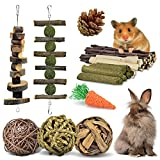 KATUMO Rabbit Chew Toys, 100% Natural Apple Wood Chinchillas Guinea Pigs Hamsters Molar Toys Accessories Suitable for Rabbits Squirrel Gerbils Small Pets Chewing and Playing Exercise Teeth Care