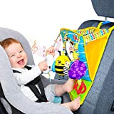 Small Steps Mirror Me Infant Car Seat Toy | Rear Facing Activity Play Center | Interchangeable Sensory Toys, Teether & Mirror | Newborn to Toddler | Fun Baby Boy/Girl Travel Toy Holder to Kick & Play