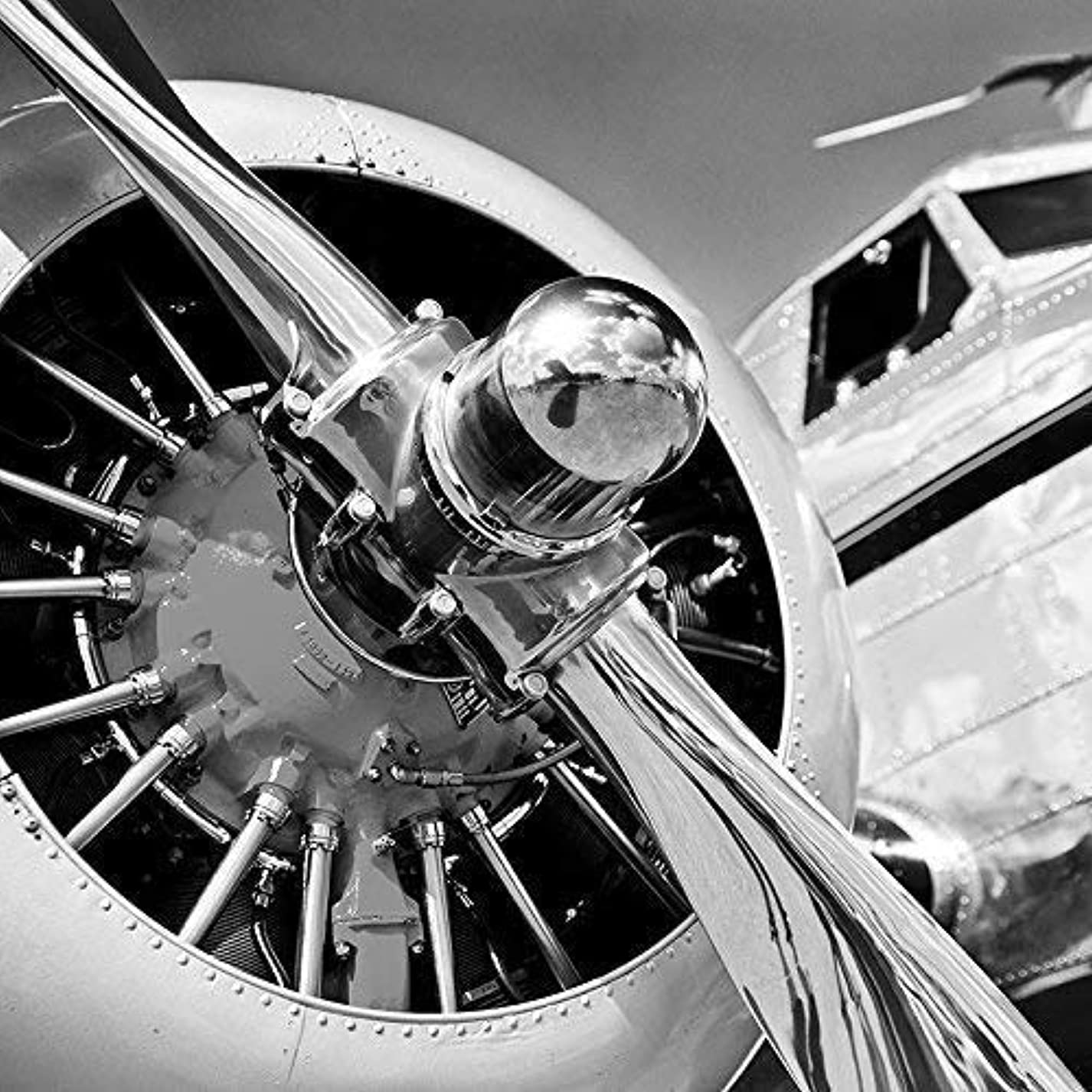 Plane Propeller Military Fighter Aviation Black and White Photograph or Canvas hol876539076396