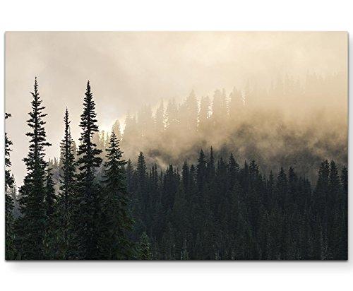 Paul Sinus Art Leinwandbilder | Bilder Leinwand 120x80cm Wald im Nebel