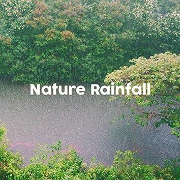 Nature Rainfall