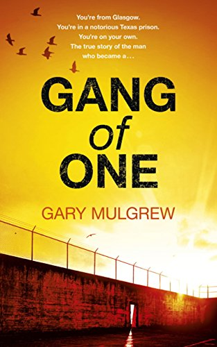 Gang of One: One Man's Incredible Battle to Find his Missing Daughter (English Edition)