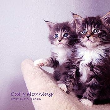 Cat's Morning