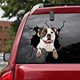 Ocean Gift American Bulldog Car Decals, Wall Decals Stickers Pack of 2 - Realistic Car Stickers Design Series 32 Size 12' x 12'