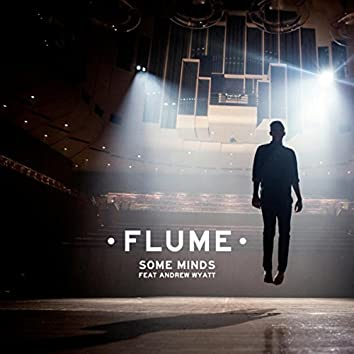 Some Minds (feat. Andrew Wyatt)