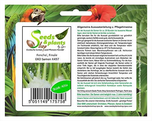 Stk - 425x Fenchel, Finale EKO- Fenchel Samen Gemüse K497 - Seeds Plants Shop Samenbank Pfullingen Patrik Ipsa