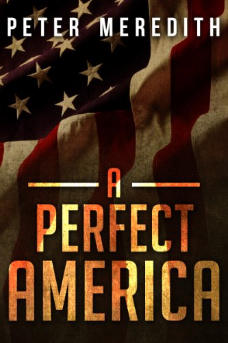A Perfect America by [Peter Meredith]