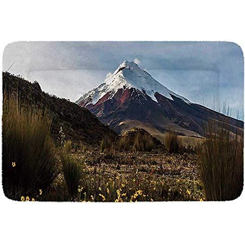 YAGEAD Volcano Simple Pet Bed, Cotopaxi-Vulkan an der Dämmerung, die durch die Wildnis Ecuador geht