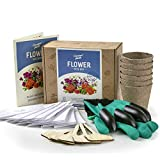Flower Seed Growing Kit - 12 Seed Packets, Over 3500 Seeds - Complete Seed Box and Grow Set - Gloves with Claws, 6 Biodegradable Peat Pots, 6 Bamboo Plant Markers - Ideal Gardening Gift