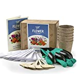 Complete Seed Box and Grow Set - Seeds Packets, Gloves with Claws, 6 Biodegradable Peat Pots, 6 Bamboo Plant Markers - Grow Your Own Indoor Garden - Ideal Gardening Gift …