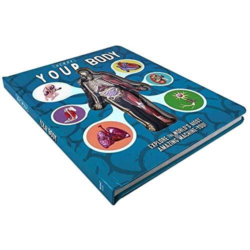 Yuyanshop Anatomy of the Human Body in English Populäres Science Book, 3D-Bilderbuch, frühkindliche Bildung für Kinder, 221,528 cm
