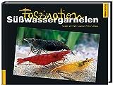 Faszination Süßwassergarnelen