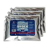 クーラーショック 保冷剤 3個セット Lサイズ 繰り返し使用可-7.8℃をキープ 7CSLSET