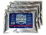 Cooler Shock 3X Lg. Zero°F Cooler Freeze Packs 10'x14' - No More Ice Replaces Ice and is Reusable - Easy Fill - You Add Water and Save! - 12lbs Total