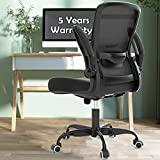 Office Chairs, Ergonomic Desk Chair with Adjustable Lumbar Support, BIFMA Passed Gaming Chair, High Back Mesh Computer Chair with Flip-up Armrests, 5-Year Warranty Executive Chair -Task Chairs Black