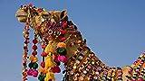 OKOUNOKO 150 Piezas Puzzles 3D, Camello Decorado, para Adultos Personalizado, Personalizado De Madera Montaje Rompecabezas Divertido, 10X15Cm