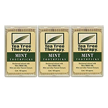 Tea Tree Therapy Mint Toothpicks 100 Ct  Pack of 3