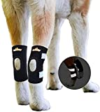 NeoAlly Cat and Dog Ankle Brace Pair Canine Rear Leg Hock Support with Safety Reflective Straps for Hind Leg Wounds Heal and Injuries and Sprains from Arthritis (XS Pair)