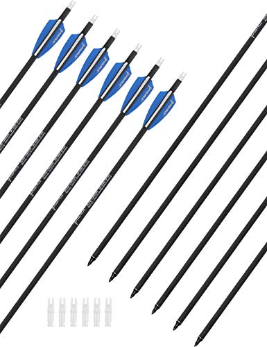 PANDARUS 30 Pure Carbon Hunting Arrows Archery with Removable for Compound & Recuve Bow Target (Pack of 12)