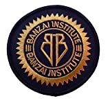 Buckaroo Banzai Institute Logo 3' Wide Embroidered Iron On Patch