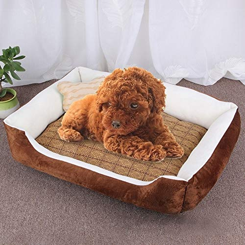 Tuzi Qiuge Hundebett Weiche angenehme Erinnerungsschaum, orthopädisches Hundebett und -Sofa (mit abnehmbarem Cover), Hundeknochenspielzeug als Geschenk-Größe Größe: M, 70 × 50 × 15 cm