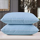 Goose Feather Bed Pillow - 600 Thread Count Egyptian Cotton, Medium Firm,Soft Support Queen Size,Blue Solid (Blue Queen Pillow-2 Pillow)