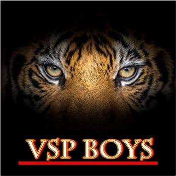 Vsp Boys Vijayapur