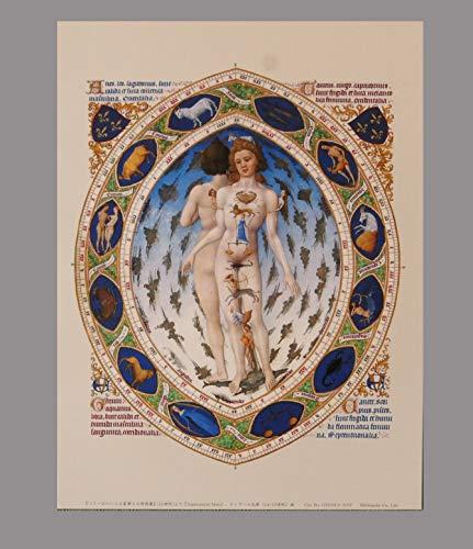 BiblioArt Series ベリー公のいとも豪華なる時祷書(Anatomical Man) ジークレープリント(額絵)