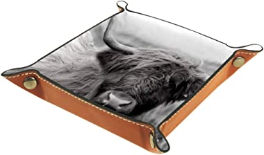 Storage Tray Scottish Highland Cow with Twisted Horns Desk Storage Plate for Key Wallet Coin Jewelry Phone Home Decor