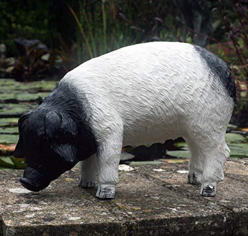Pandora Pig 27 cm Resin Garden, Porch/Doorstep Ornament …