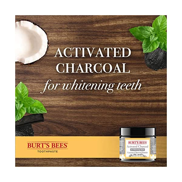 Burts Bees Activated Coconut Charcoal Powder