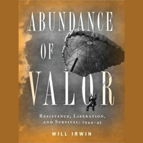 Abundance of Valor audiobook cover art