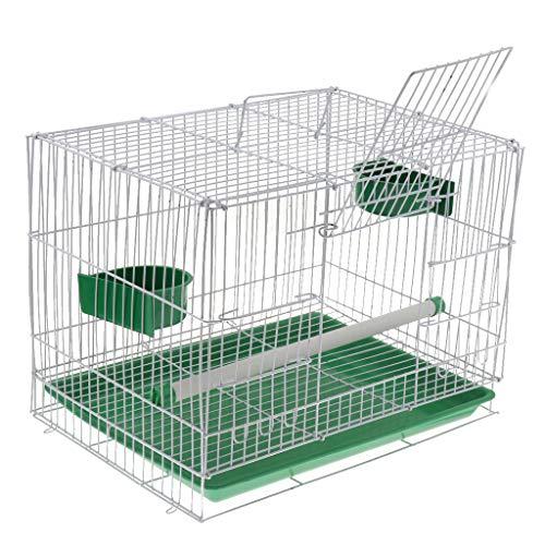 Cage à oiseaux pas chère