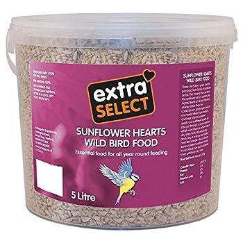 Extra Select Bac à nourriture pour oiseaux sauvages avec coeurs tournesol, 5 litres