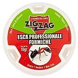 Zig Zag, Esca Insetticida Antiformiche in plastica rigida pronta all'uso, con gel antiformiche da 10 gr, inodore, non cola, non sporca.