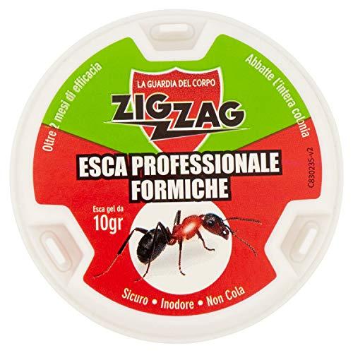 Zig Zag, Esca Insetticida Antiformiche in plastica rigida pronta all uso, con gel antiformiche da 10 gr, inodore, non cola, non sporca.