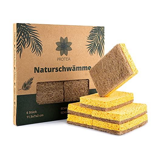 PROTEA biologisch abbaubarer Natur Schwamm Kokos Schrubber (6er Set) - Öko Küchenschwamm, Spülschwamm, Geschirrschwamm, Putzschwamm - kratzfrei, waschbar, wiederverwendbar, nachhaltig, plastikfrei