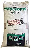 Jacklin Seed - Contractor's Mixture - 50% Kentucky Bluegrass, 40% Creeping Red Fescue, 10% Perennial Ryegrass | Certified Grass Seed (5 lbs (2,000 sq ft))