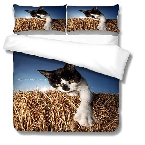 NBSZZDKL Single Bedding Duvet Cover 140x200cm with 2 Pillowcases 50x75cm,Animal cat Printing Pattern Bedding Set 3 pcs with Zipper Closure Ultra Soft Microfiber 3D Quilt Cover Sets