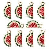 YuuHeeER Colgantes de esmalte para hacer joyas, sandía, fruta, collares, pulseras, 10 unidades