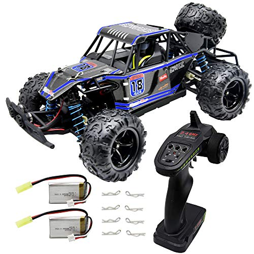 Blomiky 40KMH RC Car High Speed Remote Control Car for Kids Adults 1:18 Scale 4WD Off Road Monster Trucks 9303E Blue