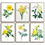 MONOKO® Juego de pósteres para el salón, juego de imágenes para el dormitorio, con estilo, 6 unidades, sin marco (flores, amarillo, narciso, 6 x A4 (21 x 29,7 cm)
