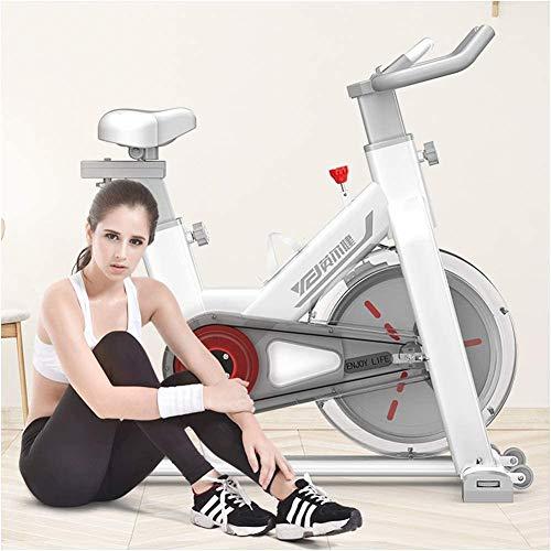 Inicio Bicicleta de Ciclo Interior con transmisión por Corr