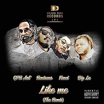 Like Me (Remix)