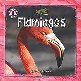 Safari Readers: Flamingos (Safari Readers - Wildlife Books for Kids)